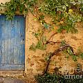Provence Door 5 Print by Lainie Wrightson