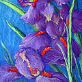 Purple Passion Print by Tanja Ware