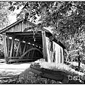 Quinlan Bridge Print by Deborah Benoit
