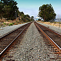 Railroad Tracks With The New Alfred Zampa Memorial Bridge and The Old Carquinez Bridge In Distance Poster by Wingsdomain Art and Photography