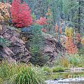 Rainbow of the Season with River Print by Heather Kirk