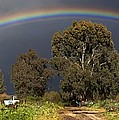 Rainbow Poster by Photostock-israel