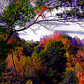 Rainbow Treetops Print by DigiArt Diaries by Vicky B Fuller