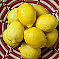 Red and white basket full of lemons Poster by Garry Gay