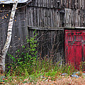 Red Barn Door - Dublin New Hampshire Print by Thomas Schoeller