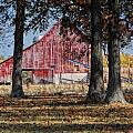 Red Barn through The Trees Print by Pamela Baker
