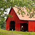 Red Barn with Pink Roof Print by Douglas Barnett