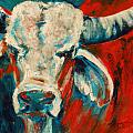 Red-Blue Braham Bull Print by Summer Celeste
