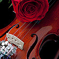 Red Rose With Violin Print by Garry Gay