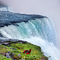 Red Shoes Left by the Falls Print by Jill Battaglia