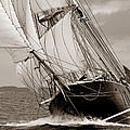 Riding the Wind -sepia Print by Robert Lacy