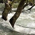 River Manavgat In Flood Print by Bob Gibbons
