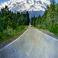 Road Leading to Snow Covered Mount Shasta Poster by Jill Battaglia