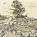 Rocky Ground at Montmajour Print by Vincent van Gogh