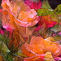 Rose 146 Print by Pamela Cooper