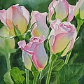 Rose Array Print by Sharon Freeman