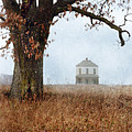 Rural Farmhouse and Large Tree Poster by Jill Battaglia