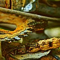 Rust Abstraction Print by Odd Jeppesen