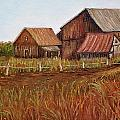 Rustic Barns by Reb Frost