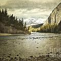 Rustic Bow River Poster by Andrea Hazel Ihlefeld
