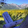 Rustic moss covered pioneer era fence in Olympic Valley California Poster by Scott McGuire