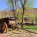 Rustic Wagon at Historic Lonely Dell Ranch - Arizona Poster by Gary Whitton