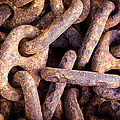 Rusty Anchor Chains in Key West Print by Adam Pender