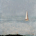 Sail Away Print by Colleen Kammerer