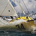 Sailboat Le Pingouin Open 60 Charging  Print by Dustin K Ryan