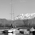 Sailboats At Utah Lake State Park Poster by Tracie Kaska