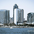 San Diego Downtown Waterfront Buildings Poster by Paul Velgos