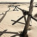 Sand and Fences Print by Heather Applegate