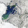 Satellite View Of The Ross Sea Poster by Stocktrek Images