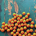 Scattered Tangerines Print by Sarah Palmer