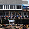 Sea Lions At Pier 39 San Francisco California . 7D14274 Print by Wingsdomain Art and Photography