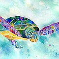 Sea Weed Sea Turtle  Poster by Jo Lynch