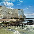 Seaford Cliffs Poster by Donald Davis