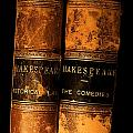 Shakespeare Leather Bound Books Poster by The Irish Image Collection