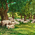 Sheep Pasture Ithaca New York Print by Ethel Vrana