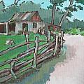 Sheep Sheering Shed Poster by Sandy Tracey