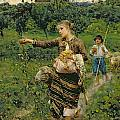 Shepherdess carrying a bunch of grapes Poster by Francesco Paolo Michetti