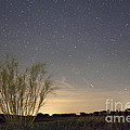 Shooting star Print by Andre Goncalves