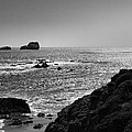 Shoreline Near Piedras Blancas I Print by Steven Ainsworth