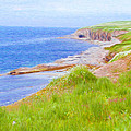 Shores of Newfoundland Print by Jeff Kolker