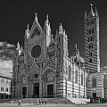 Siena Duomo Poster by Michael Avory