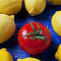 Single tomato with lemons Poster by Garry Gay