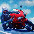 Sky Pilot - Honda CBR600 Poster by Brian  Commerford