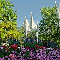 SLC Temple Flowers Print by La Rae  Roberts