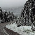 Snow on Road Through Forest Poster by Linda Phelps