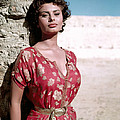 Sophia Loren, 1950s by Everett